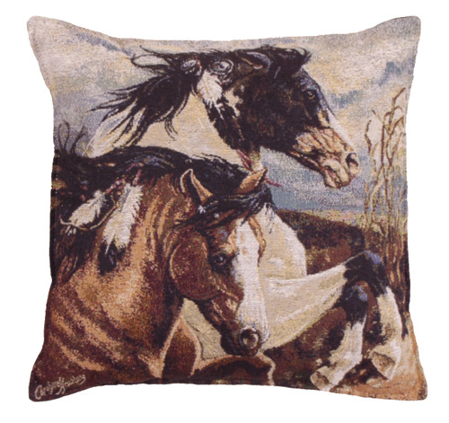 Wind Voyager Throw Pillow by Simply Home (17x17 Inches)