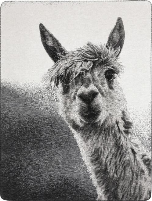 Biederlack Paco The Alpaca Blanket