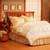 Pacific Coast® Light Warmth Down Comforter