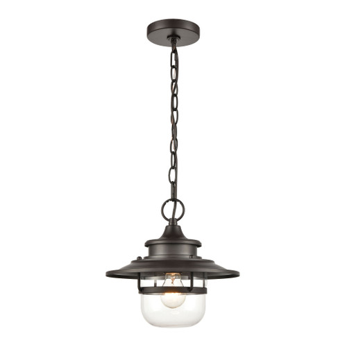 "11"" ELK Lighting Renninger 1-Light Outdoor Pendant in Oil Rubbed Bronze with Clear Glass, Traditional - 1"