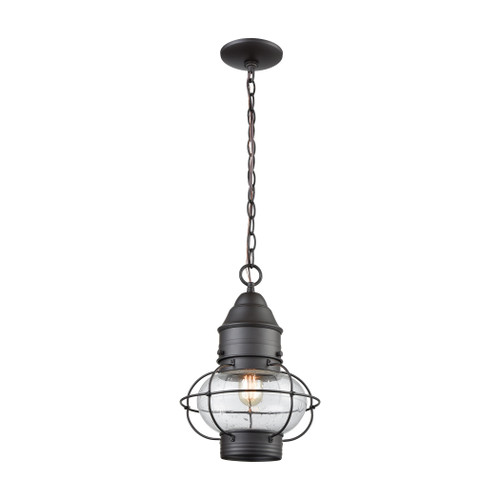"14"" ELK Lighting Onion 1-Light Outdoor Pendant in Oil Rubbed Bronze, Traditional - 1"