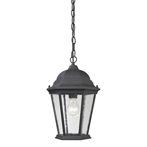 "14"" Thomas Lighting Temple Hill 1-Light Hanging Light in Matte Textured Black, Traditional - 1"