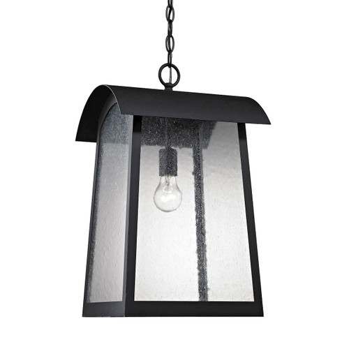 "16"" Thomas Lighting Prince Street 1-Light Outdoor Pendant in Matte Black, Transitional - 1"