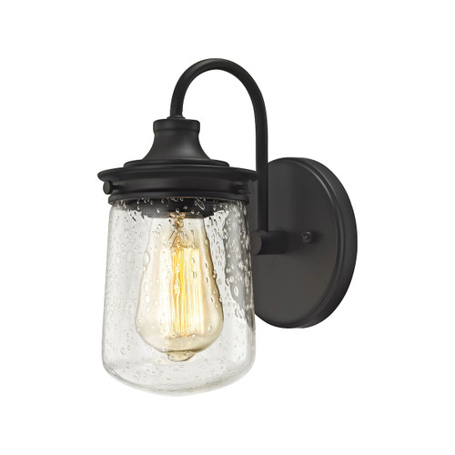 "10"" ELK Lighting Hamel 1-Light Vanity Lamp in Oil Rubbed Bronze with Clear Seedy Glass, Transitional - 1"