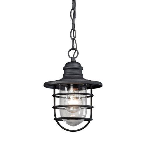 "10"" ELK Lighting Vandon 1-Light Outdoor Pendant in Textured Matte Black, Transitional - 1"