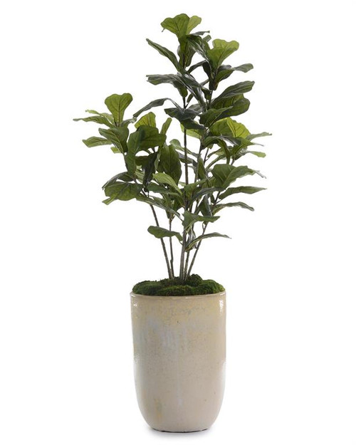 "60"" John Richard Fiddle-Leaf Fig Planter - 1"