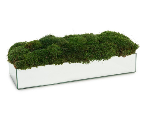"25"" John Richard Mirrors and Moss Planter - 1"