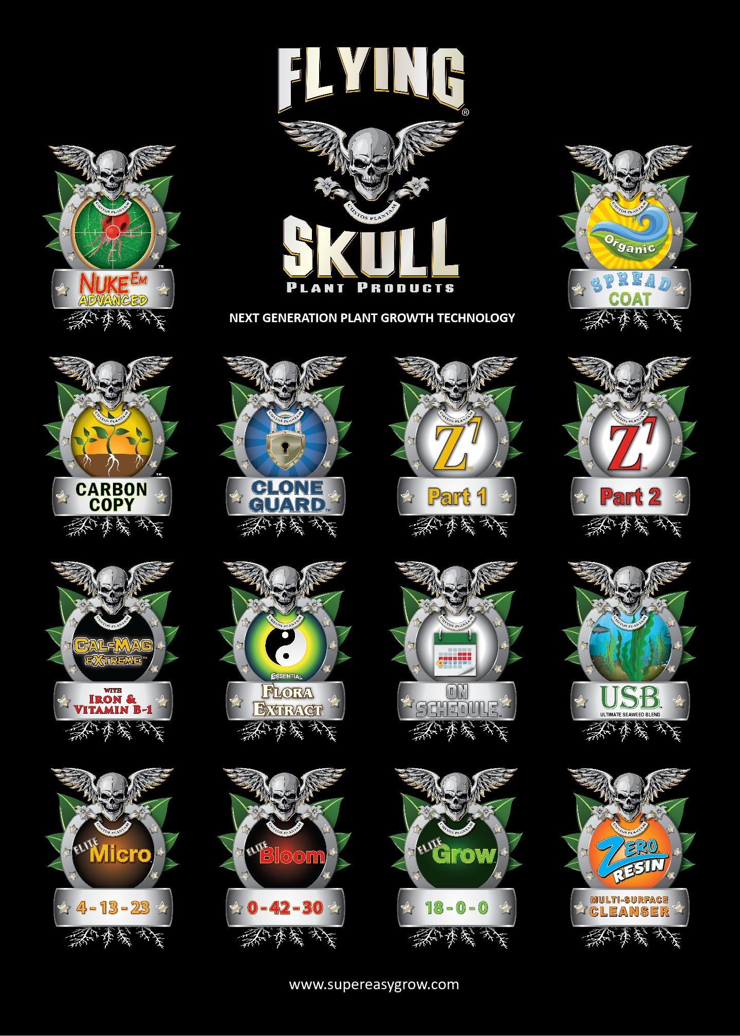 Flying Skull Product Range Poster