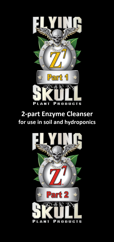 Flying Skull Z7 Flyer Front