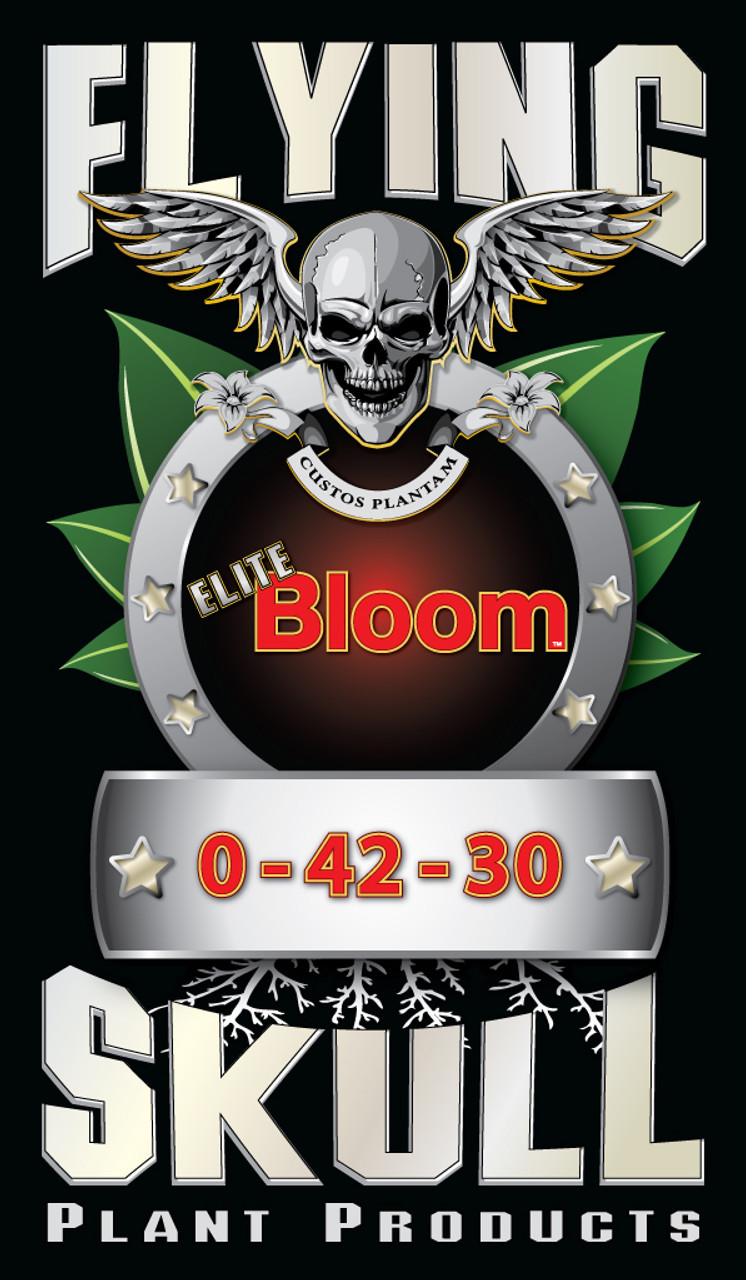 Flying Skull Elite Bloom Logo