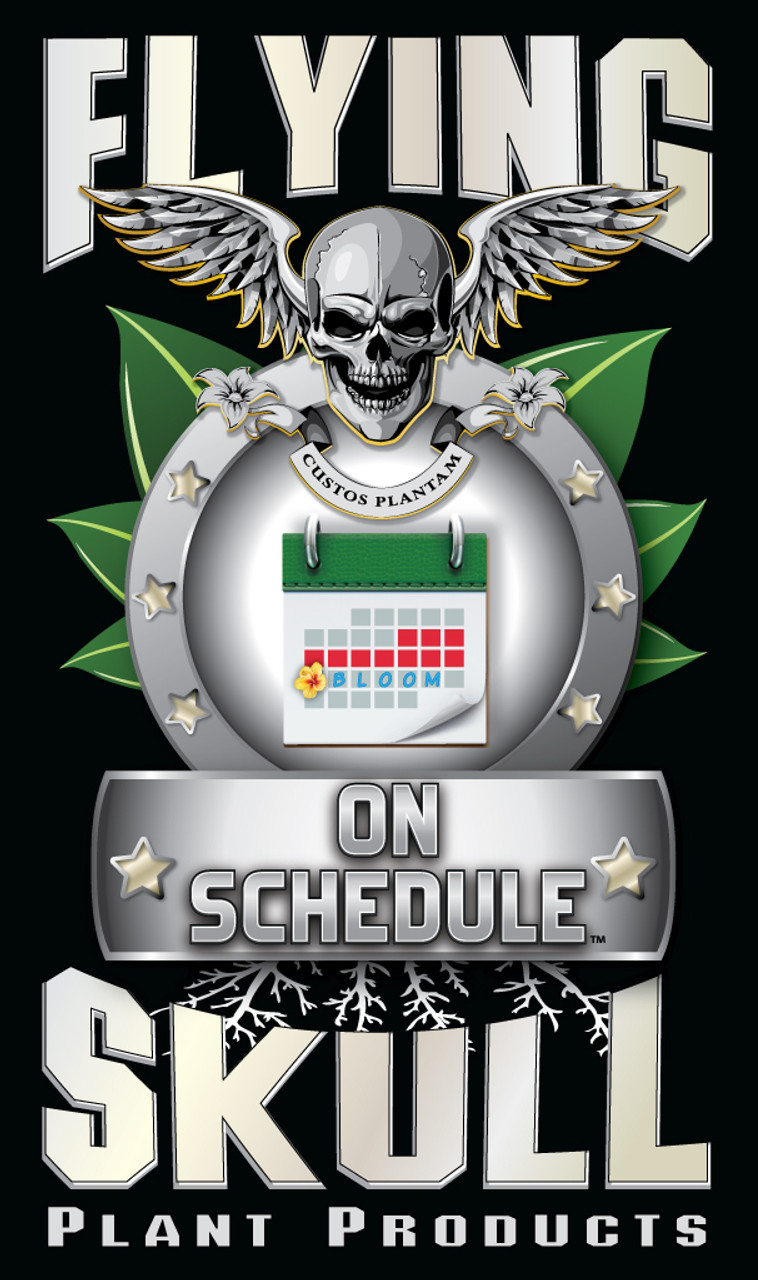 Flying Skull On Schedule Product Logo