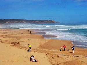 Coastline views Rye surf beach (Gunnamatta)