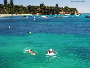 Its like swimming in paradise (Portsea) Dec16