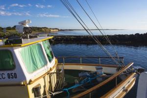 Swan Bay views from the Harbour (Queenscliff)