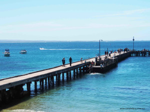 At the pier as the fishermen arrive (Portsea)