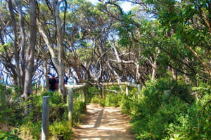 Walking trails and nature discovery (Pt Lonsdale)