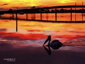 Swan Bay Winter Sunrise June18 Enhanced (Queenscliff)