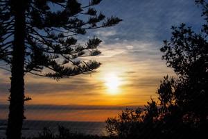 Winter sunrise over the Ocean (Queenscliff) August 2019