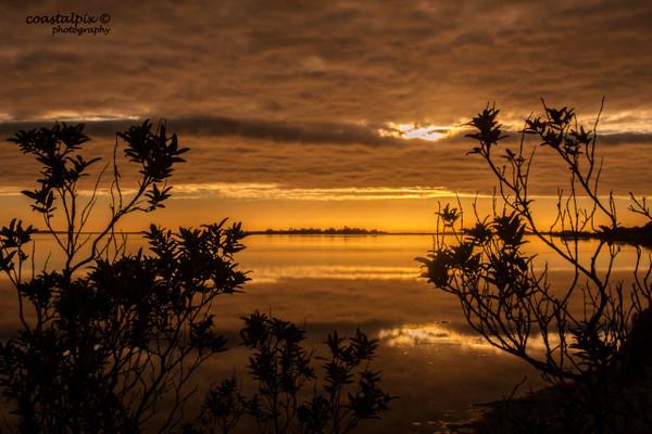 Winter Morning Views Swan Bay (Queenscliff)