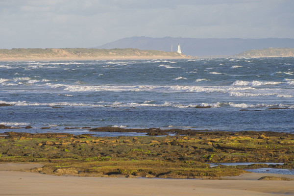 Tides out and a clear view of Point Lonsdale Lighthouse (Ocean Grove)