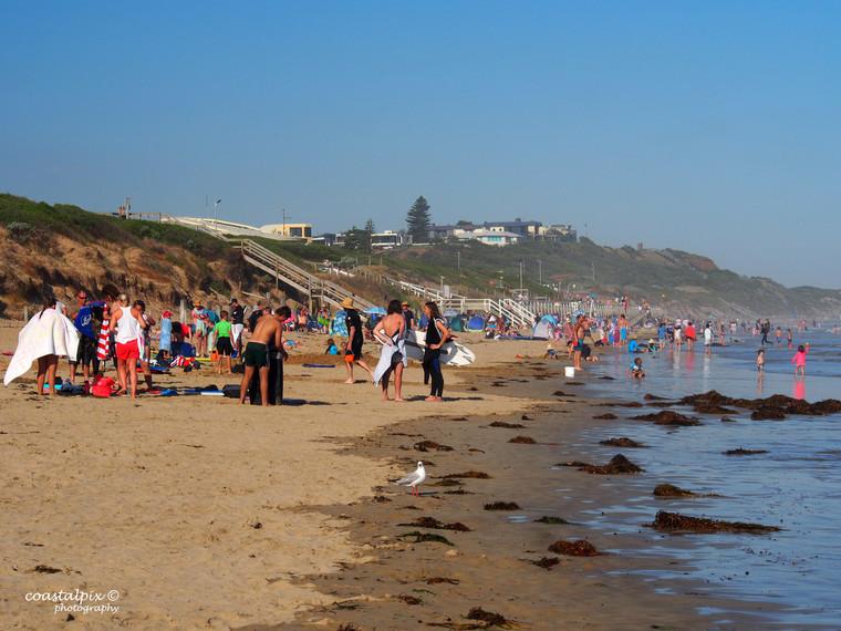 Ocean Grove - 2019  Calendar Pic - P1061219
