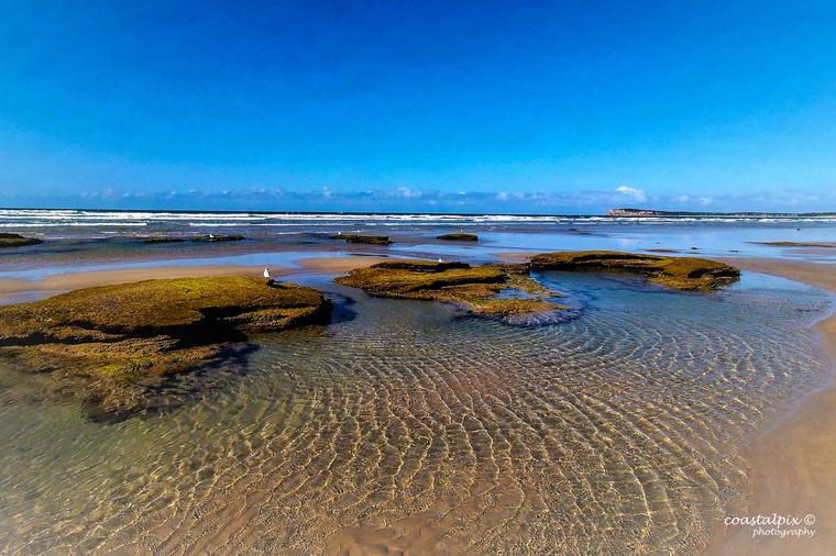 Ocean Grove - 2019  Calendar Pic - 3061156