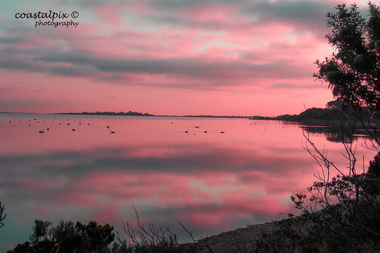 Pink sunrise and cloud reflections on Swan Bay in Autumn