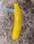 Hand Blown Mini Banana Glass Ornament