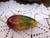 Mango Glass Pipe
