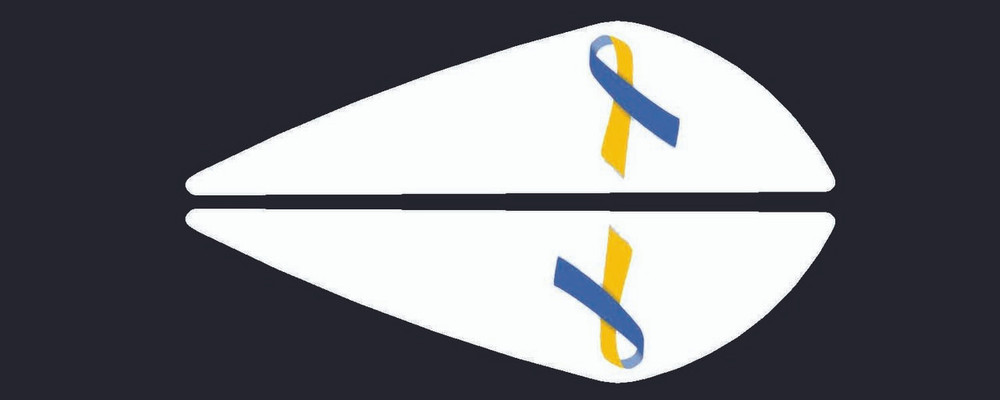 Vane Decal-Down syndrome Awareness-3