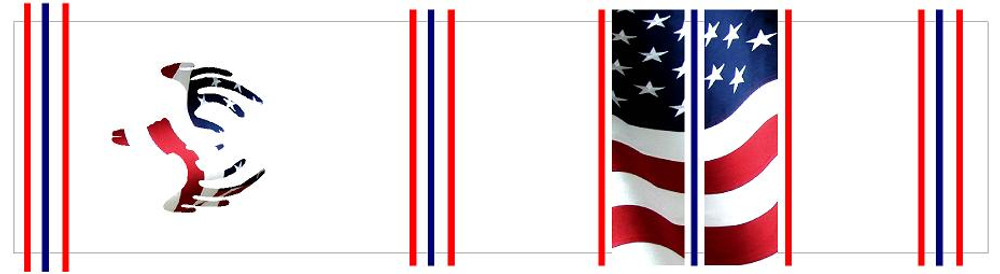 Arrow Wraps-Amercian Flag w/ European Mount Deer Skull