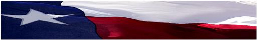 Arrow Wraps-Texas Flag