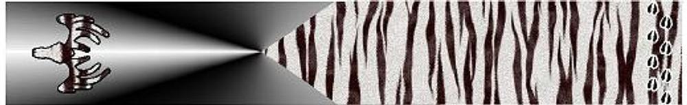 Arrow Wraps-Zebra Fade