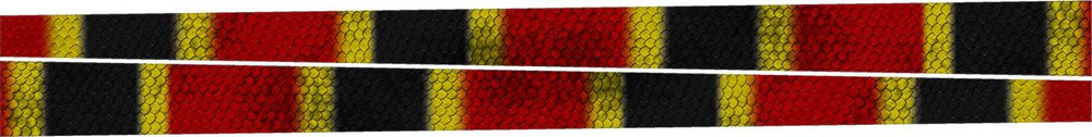 LIM-Coral Snake Libsations