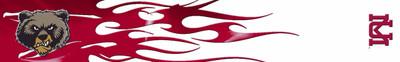 Arrow Wraps-Montana Grizzlies-1
