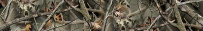 Arrow Wraps-Reaper Buck Camo