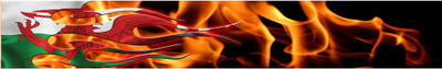 Arrow Wraps-Welsh flame