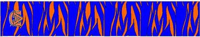 Arrow Wraps-Auburn Tigers-5
