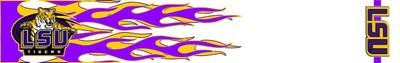 Arrow Wraps-LSU 1