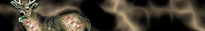 Arrow Wraps-Zombie-5