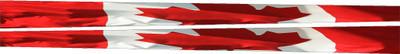 LIM-Canadian flag