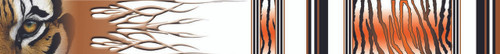 Arrow Wraps-Ray Cook-7