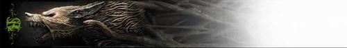 Arrow Wraps-Sarah Behrens-7
