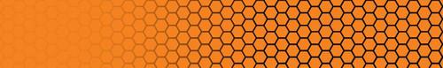 FLO-Denton Broady-1 flo orange