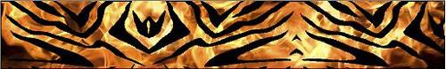 Arrow Wraps-Fire Zebra