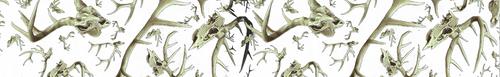 Arrow Wraps-PSE-Skullworks white