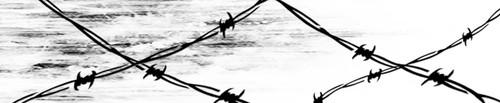 Arrow Wraps-Del Libby-2020-2