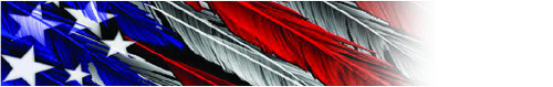 Arrow Wraps-Feathered Flag