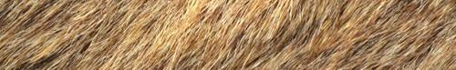 Arrow Wraps-Deer Fur