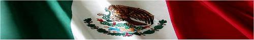 Arrow Wraps-Mexican Flag